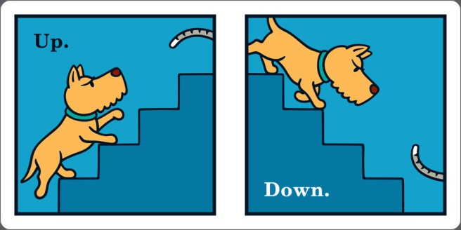 up-down-angry-dog